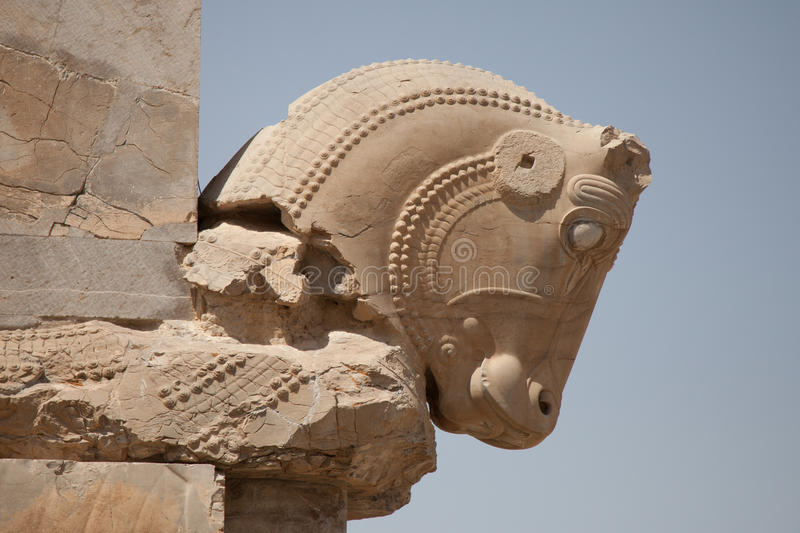 Horse Head Persepolis Stock Image Image Of Asia Ruins 40299517