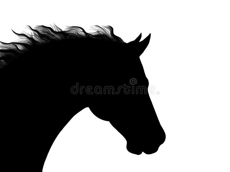 download horse head silhouette vector stock vector image 1050156