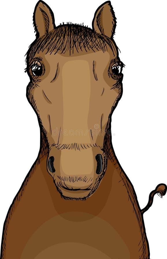 Horse Illustration vector illustration