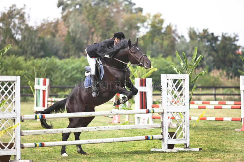 Horse and jockey jumping. Show jumping.girl riding horse and jumping stock images
