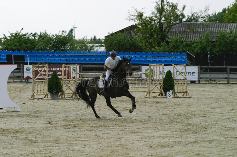 Horse jump. At the equitation contest in Bucharest royalty free stock photo
