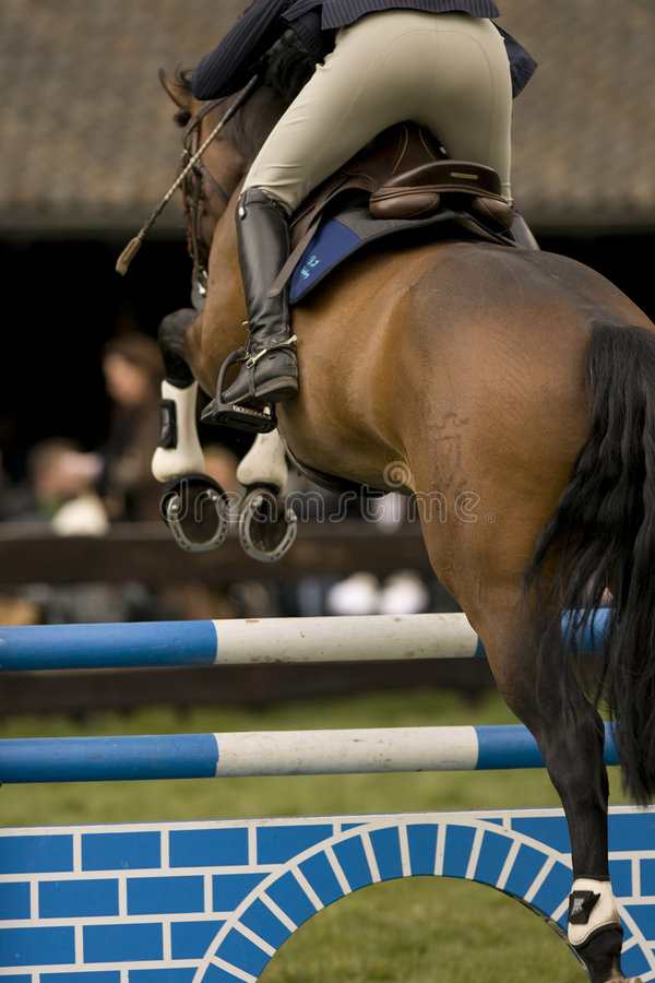 Download Horse Jumping 020 stock image. Image of derby, jump, green - 4895079