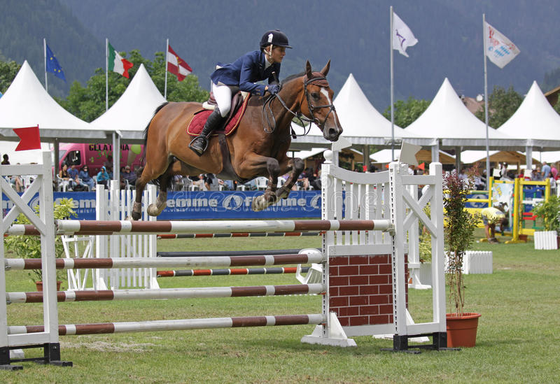 Download Horse jumping editorial image. Image of horses, futurity - 20479305