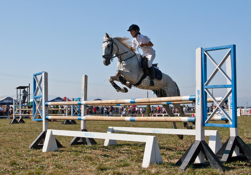 Download Horse jumping editorial photography. Image of hopsz, zsoke - 21204562