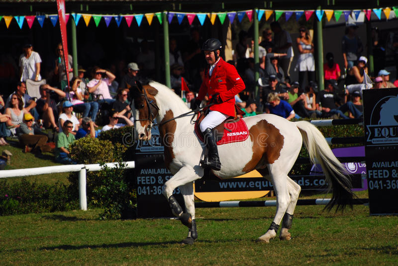 Horse jumping - Barry Taylor royalty free stock photo