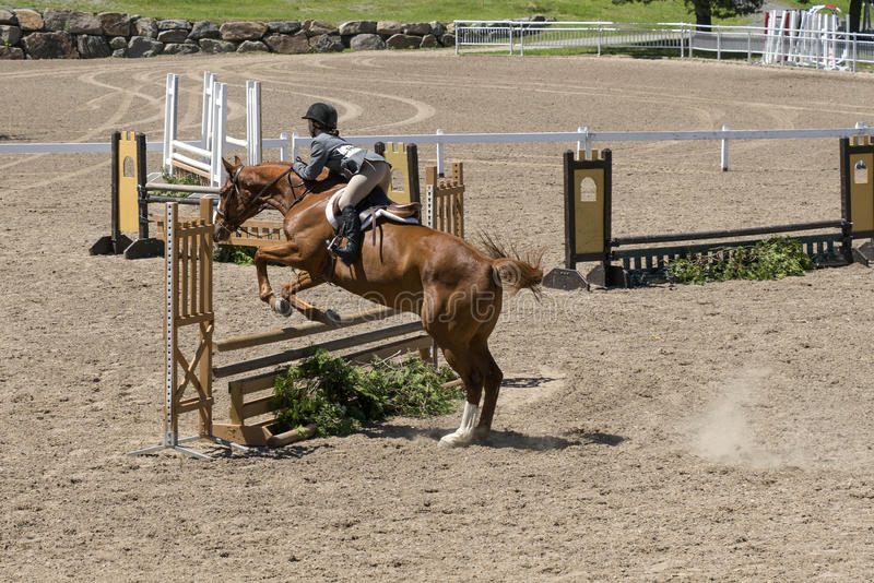 Horse jumping. Bromont june 14, 2015 picture of girl with a brown horse making a jump during competition royalty free stock photo