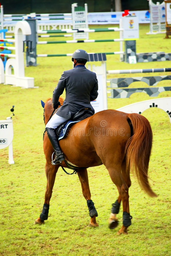 Horse jumping competition. Horse in a horse jumping competition circuit stock photo