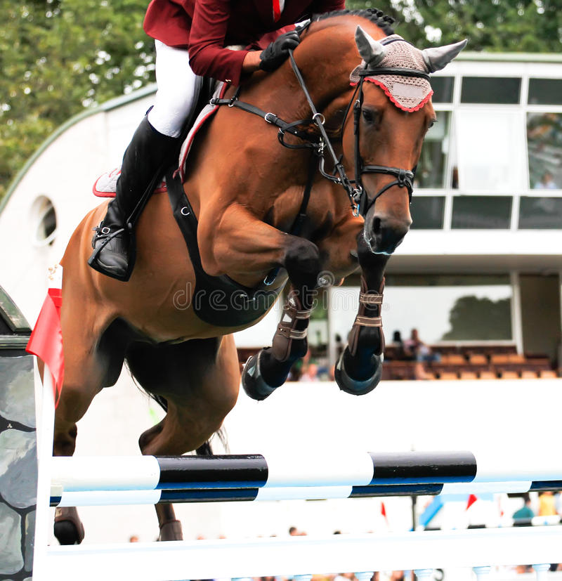 Horse jumping competition. Participants in an international horse jumping competition stock photography