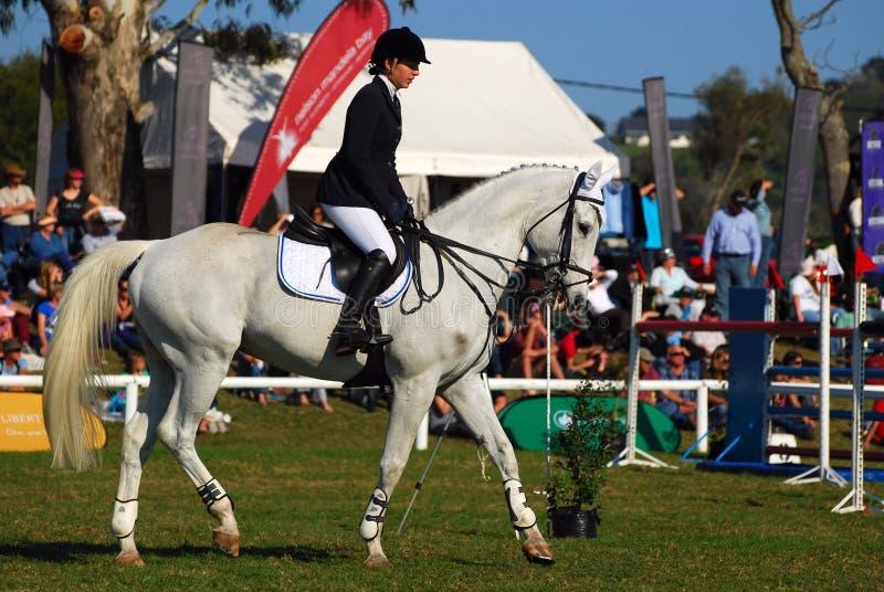 Horse jumping - Kayla Gertenbach stock photos