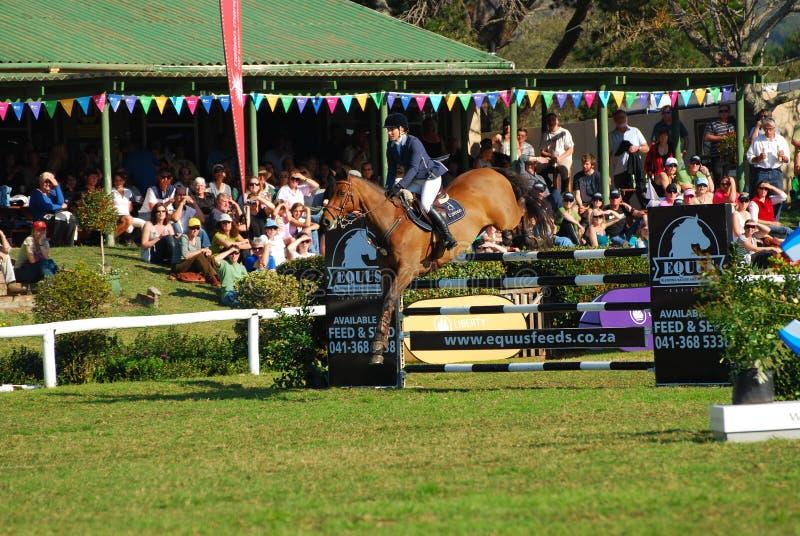 Horse jumping - Lara Neill royalty free stock photo