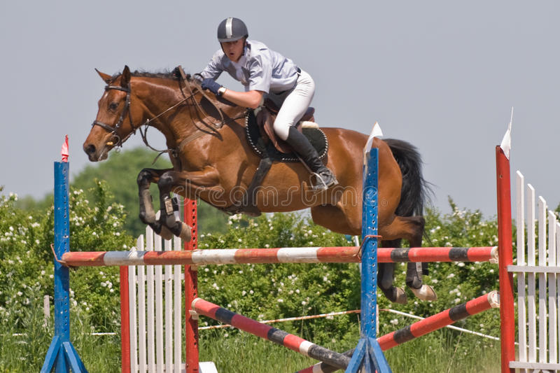 Download Horse jumping show editorial photography. Image of saddle - 9624357