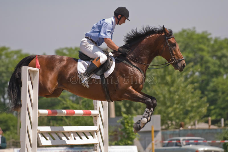 Download Horse jumping show stock image. Image of mare, success - 9624445