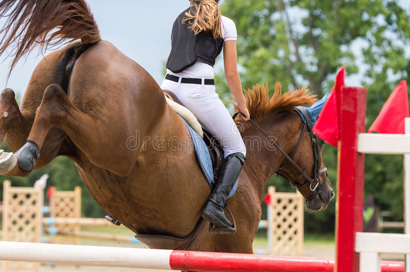 Horse jumping show royalty free stock photo