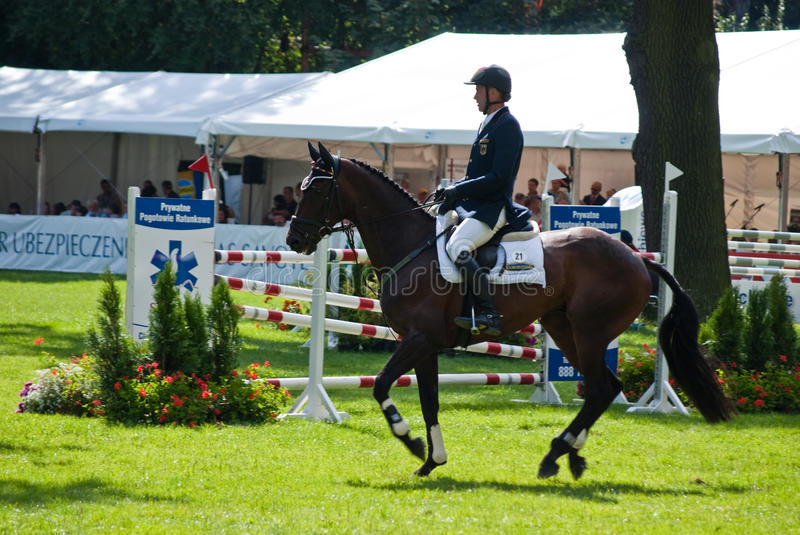 Download Horse Jumping Tournament Editorial Image - Image: 11159305