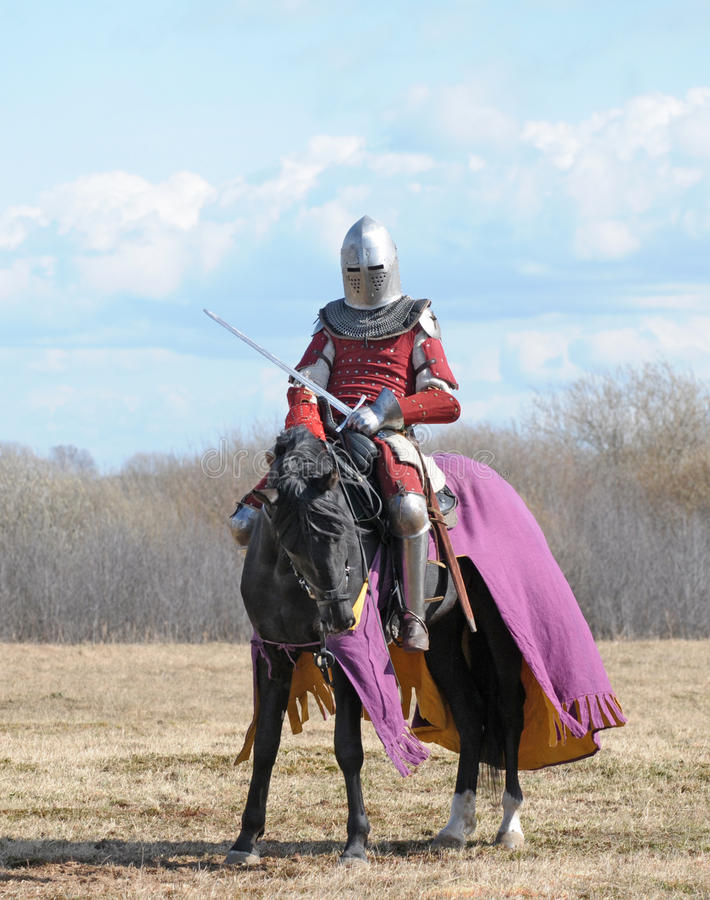 The horse knight royalty free stock image