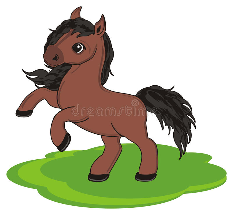 Horse and lawn. Brown horse stand on the green lawn of grass vector illustration