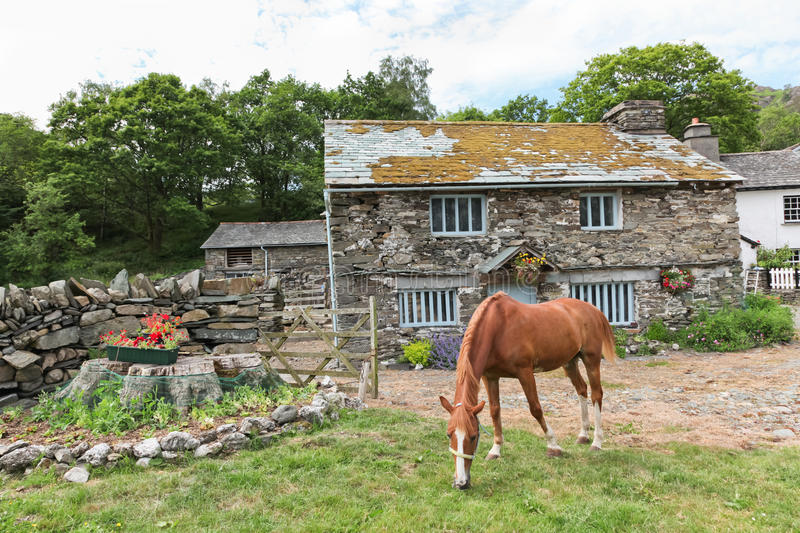 Download Horse Lawnmower stock photo. Image of natural, stone - 28799994