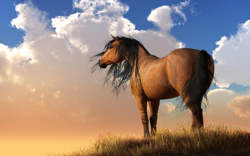 Chestnut Horse. A horse with a light brown `Chestnut` coat stands on a grassy hillside watching the sunset. A gentle breeze picks up its black mane and tail as vector illustration