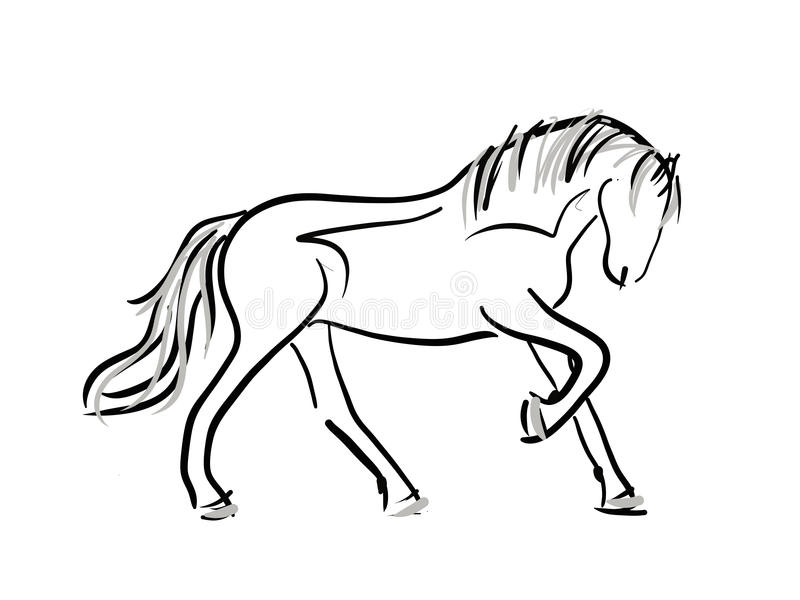 Paard Kleurplaat Png Horse Line Art Sketch Stock Illustration Illustration Of
