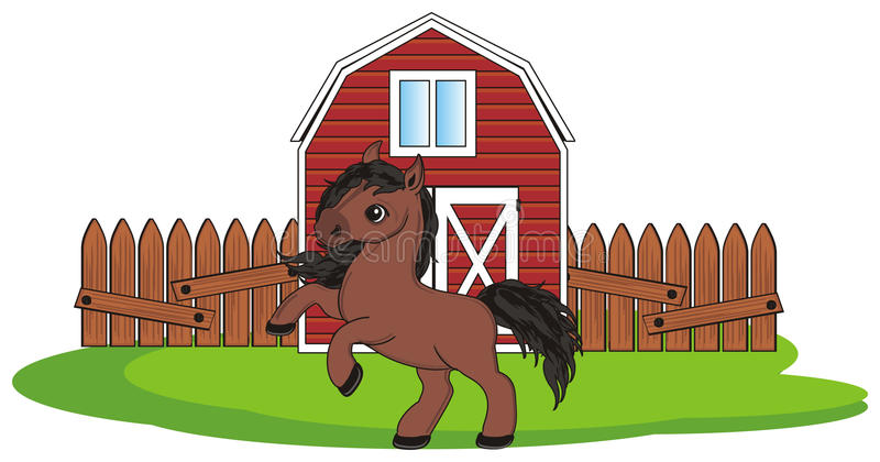 Horse live in stall vector illustration