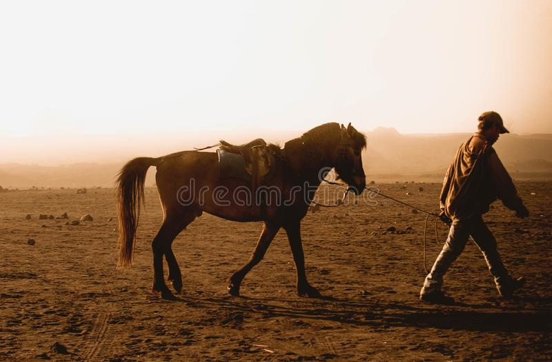 Horse is the main transportation for tourists visiting at mount Bromo. Surabaya, Indonesia - July 13, 2004: Horse is the main transportation for tourists royalty free stock photography