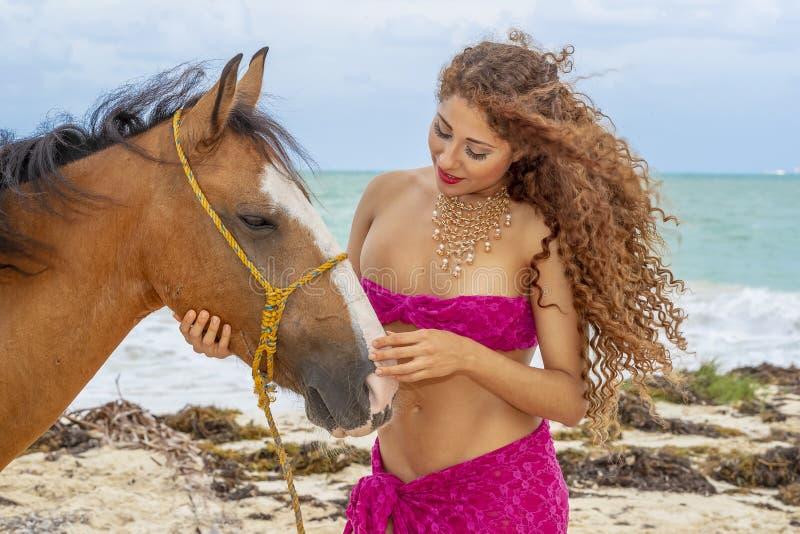 And Horse modelo moreno hispánico foto de archivo