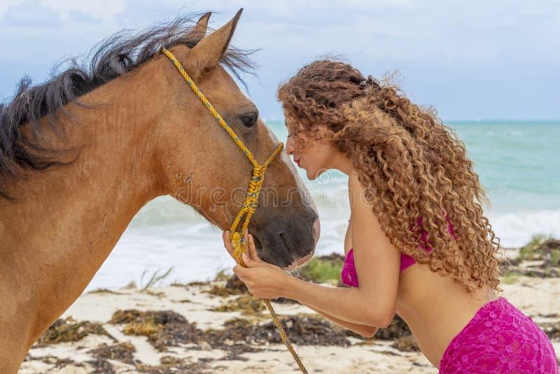 And Horse modelo moreno hispánico fotografía de archivo