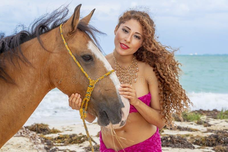 And Horse modelo moreno hispánico imagen de archivo