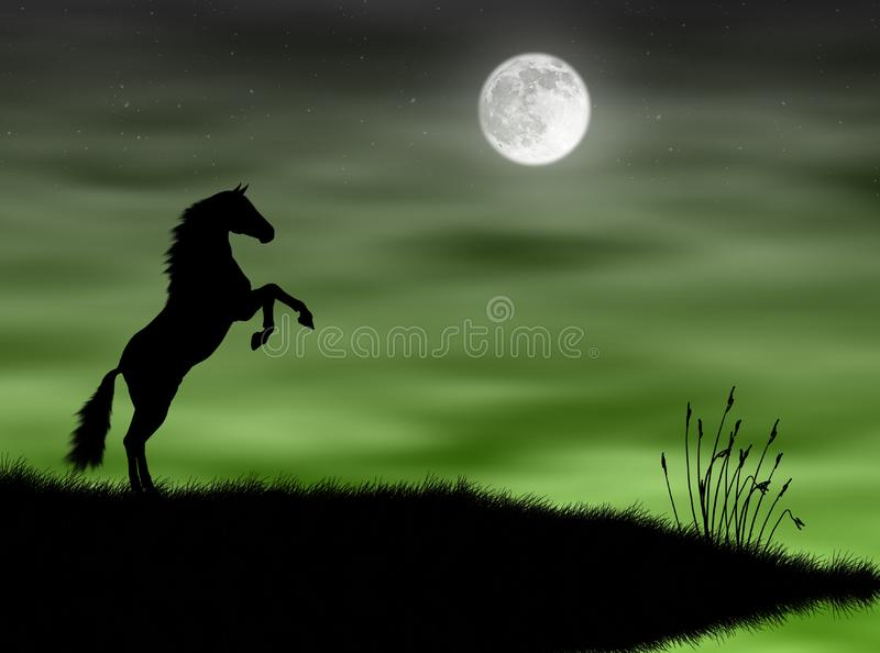 Horse in the moonlight stock image