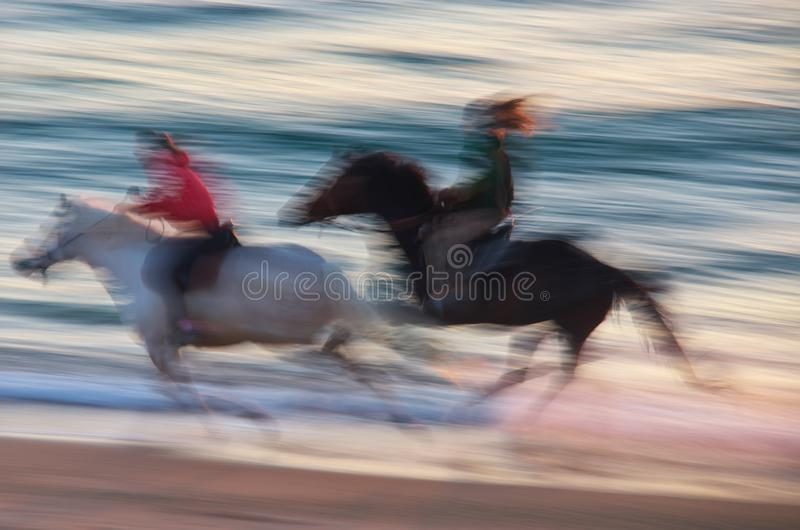 Horse moving on the sea. Speed motion scene royalty free stock photo