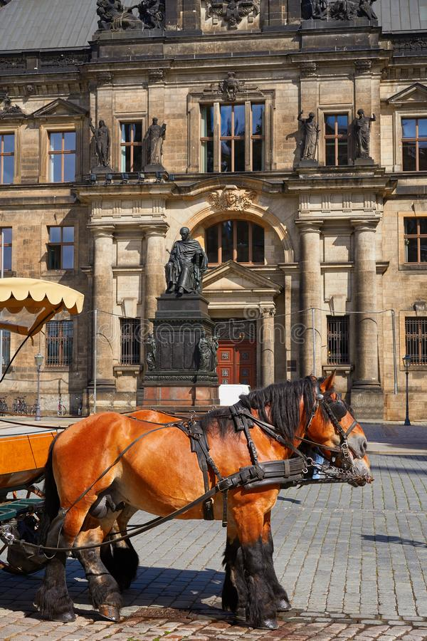 Horse in Oberlandesgericht of Dresden Germany stock photos