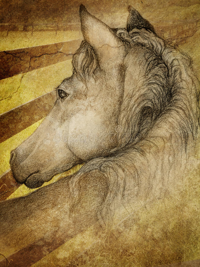 Horse in pasture. A hand drawn sketch mixed with photographic imagery of a horse in a pasture with a fence line
