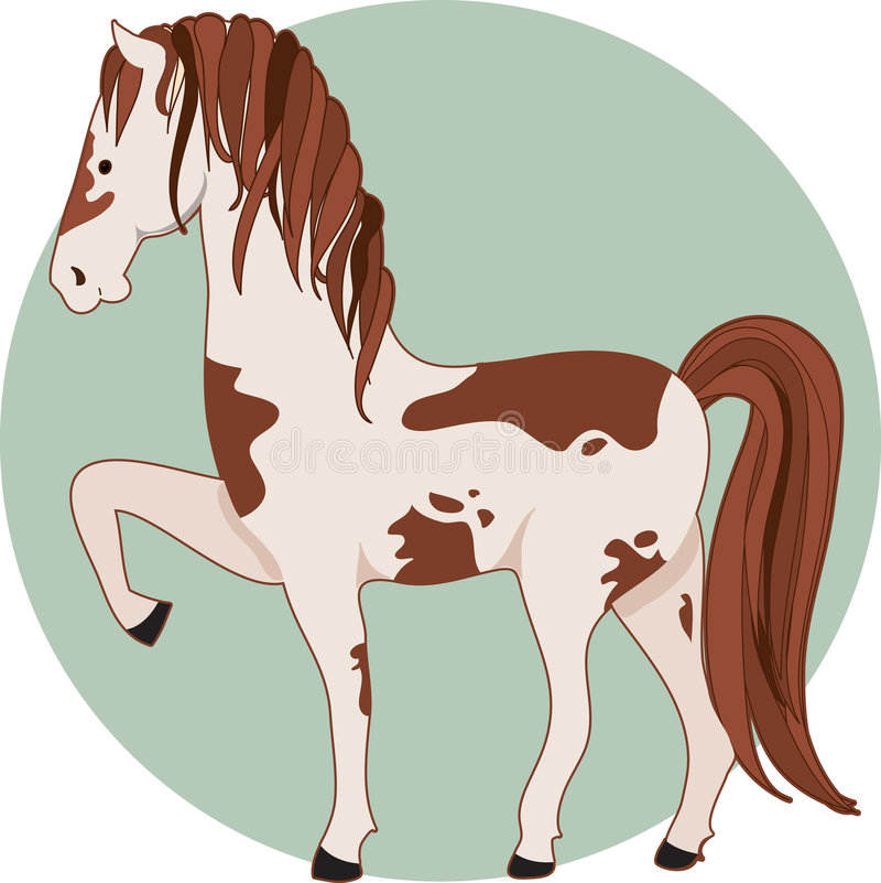 Horse Pinto stock illustration