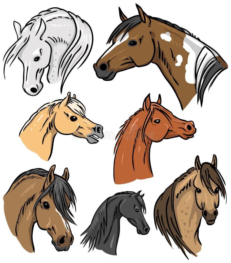 Horse Portrait Collection stock illustration