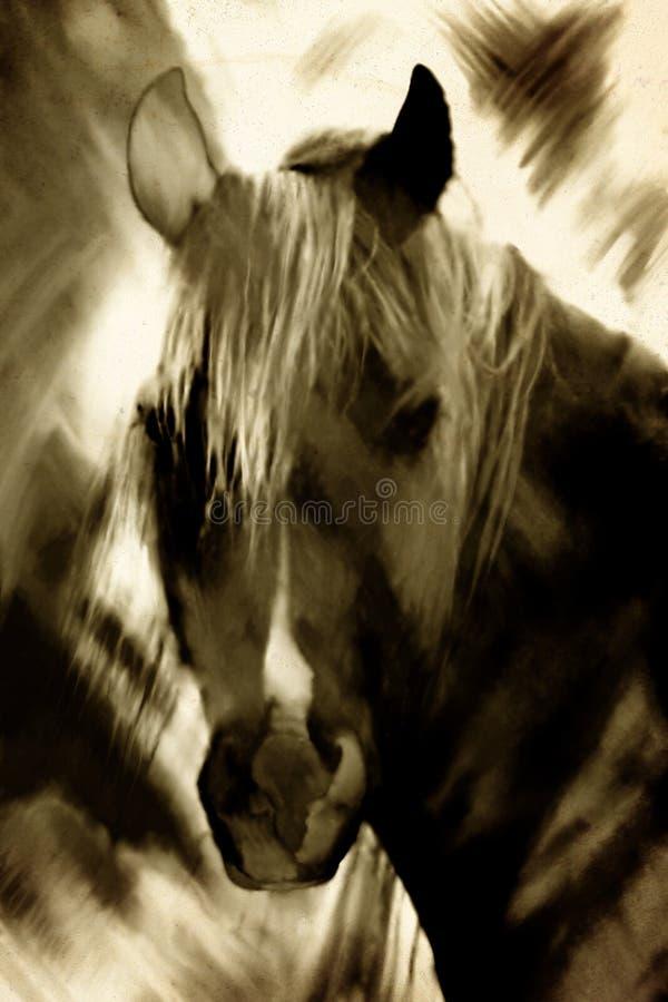 Horse portrait painting vector illustration