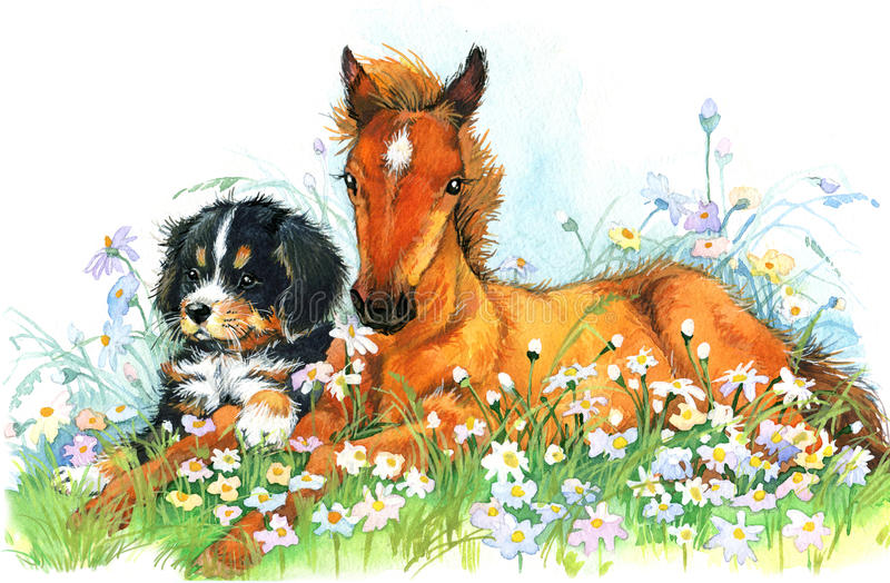 Horse and and puppy. background with flower. illustration stock illustration