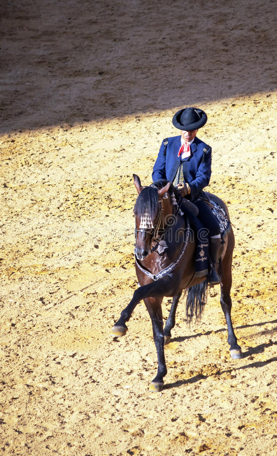 Download Horse of pure  in vertical editorial image. Image of culture - 25310950