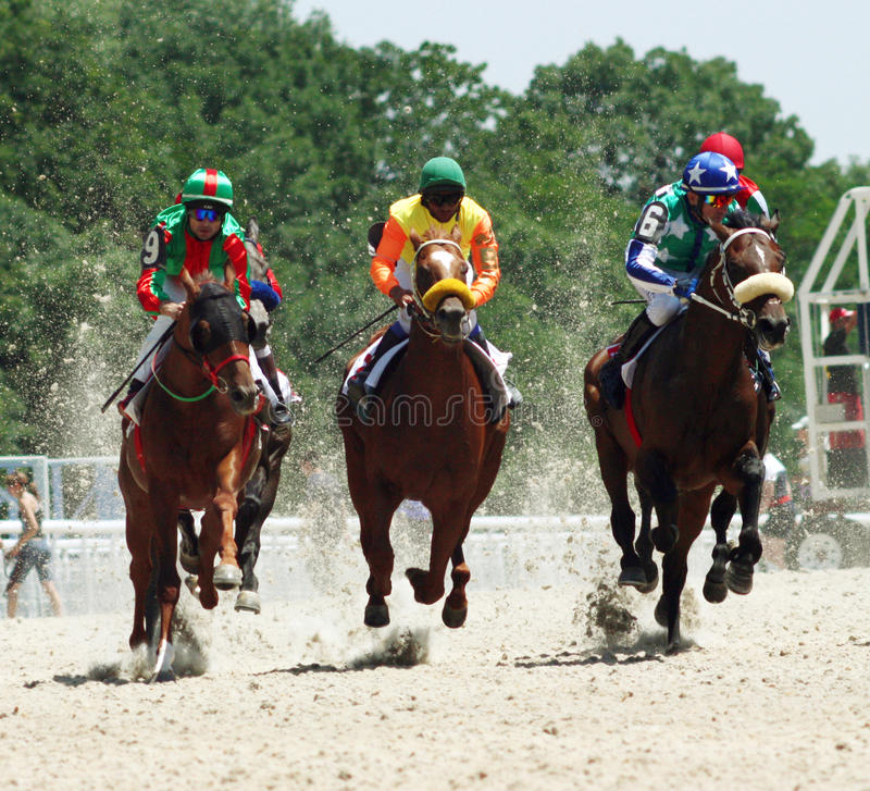 Free Horse Race. Royalty Free Stock Images - 10680029