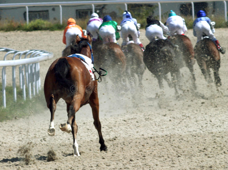 Download Horse race. editorial photography. Image of beshtau, shouting - 10844742