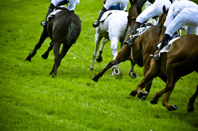 Horse race. Group of horses running during a horse race in blur motion