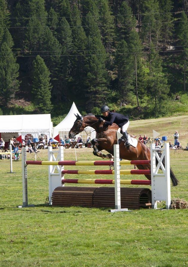 Horse race royalty free stock photos