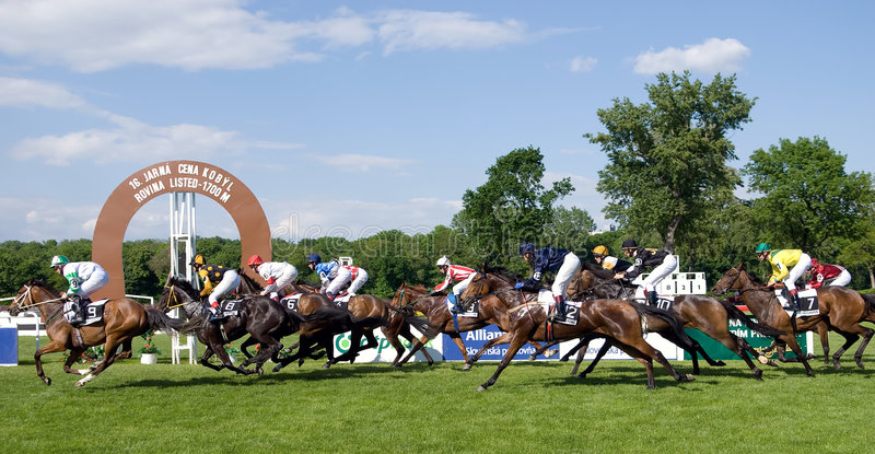 Horse race. At Petrzalka race track in Bratislava, Slovakia that took place on 05/11/2008 royalty free stock image