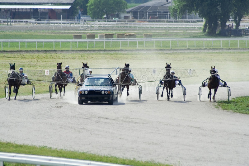 Download Horse Race stock image. Image of outdoor, line, dirt, people - 7678725