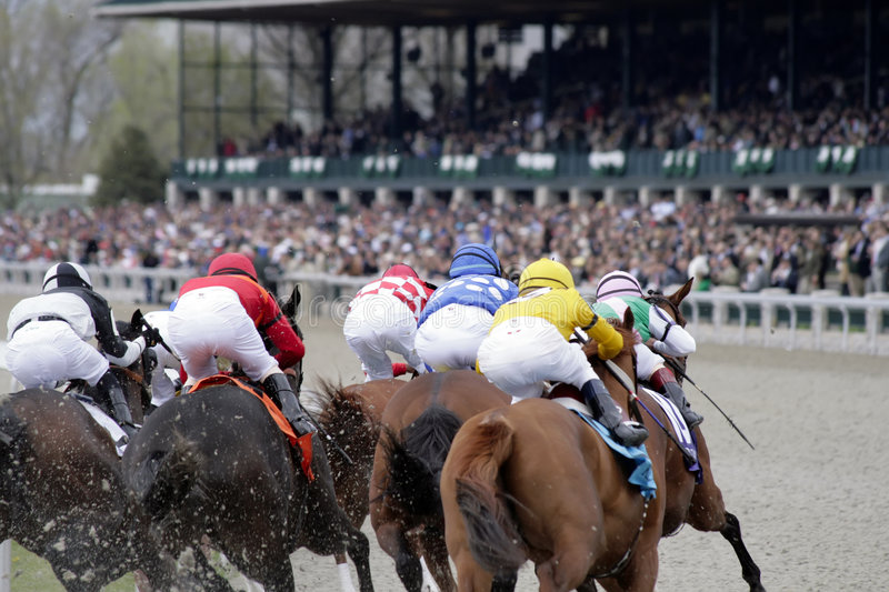 Download Horse Race stock photo. Image of track, thoroughbred, behind - 8862240