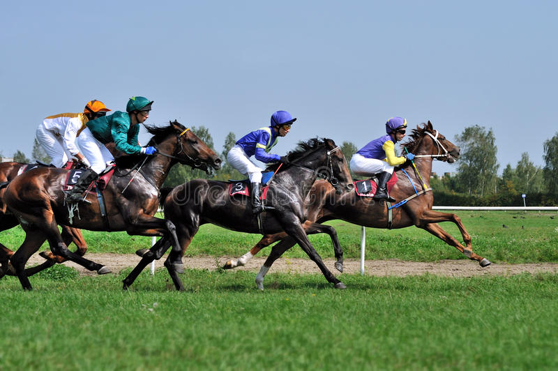 Download Horse race editorial photo. Image of shows, leadership - 40958681