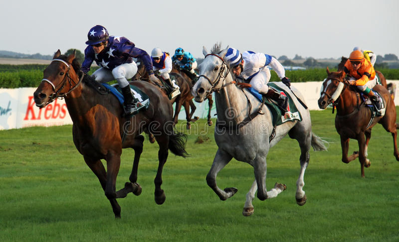 Horse race - Heiligendamm 01 royalty free stock image