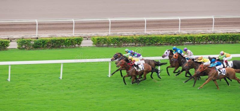 Horse Race, jockey stock image
