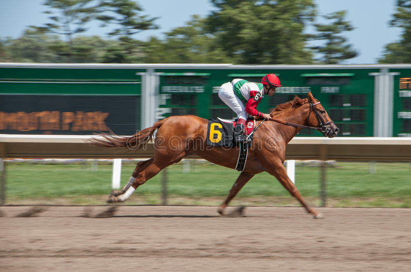 Download Horse Race At Momouth Park Editorial Photo - Image: 83721206