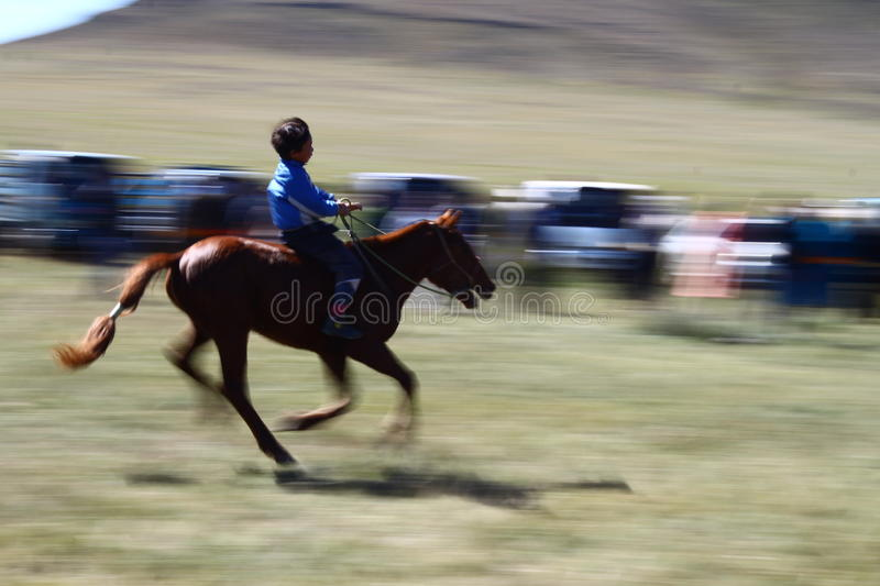 Horse race at Naadam festival with a child in Mongolia stock image