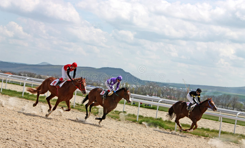 Horse race of the prize Dombai. royalty free stock photos